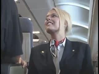 Amerikaans stewardes fantasy