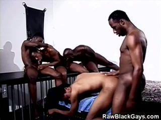 Cocoa boys festa