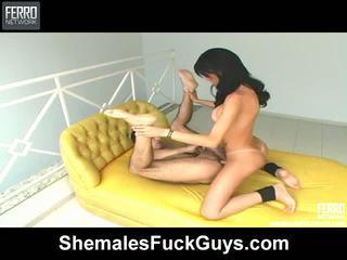 Marcela kétnemű és pussyboy -ban akció