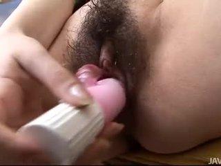zeshkane, japonisht, lodra