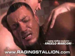 gay, gays porn sex hard, gay sex tv video