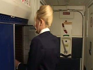 ühtne, stewardess