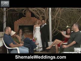 Alessandra matheus シーメール 結婚式 セックス