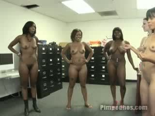 Group of hos line up naked to shake their booties and bounce their titties