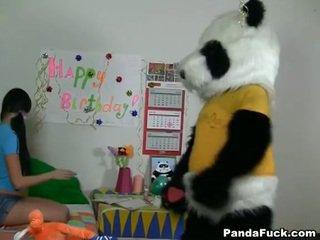 Panda gets ung tonårs baben