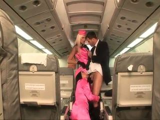 egyenruha, air hostesses