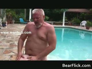 Homo bears hammering hun vet asses