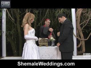 혼합 의 alessandra, 천사, senna 로 쉬 메일 weddings