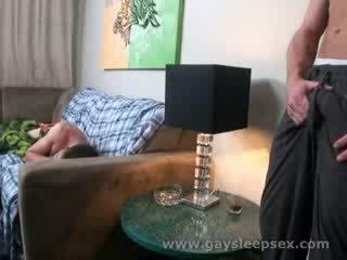 Slapen roomate woken omhoog naar seksueel situatie