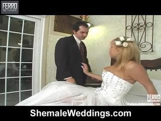 Lang shemale weddings klem met wild porno sterren matheus, noiva, patricia_sabatiny