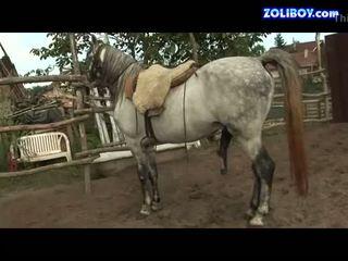 Orsay peed in farm 2
