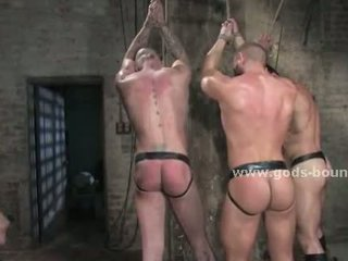 Three gay guys tied