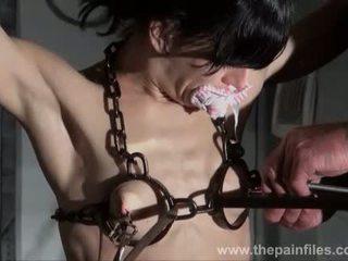 mučenje, predložitev, american