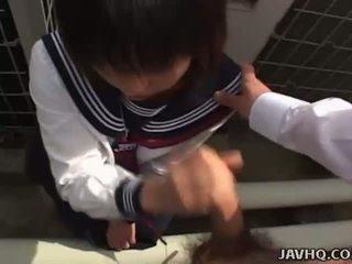 男女共学の, 日本の, 日本