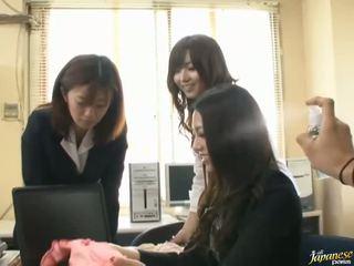 Pal drills japanska fågelunge