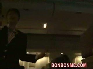 controleren japanse, pijpbeurt, heet stewardess scène