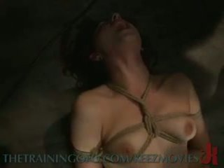 plezier marteling, beste pervers, groot ruw tube