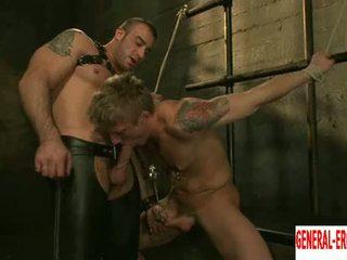 online porno, heetste homo- klem, kwaliteit stoeterij klem
