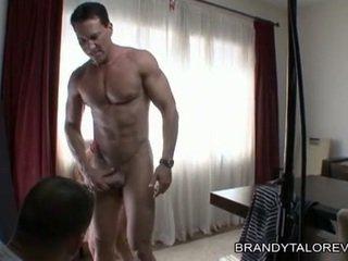 Breasty brandy taylor receives її пизда thumped по a rock жорсткий пеніс