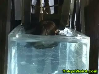 kwaliteit japanse porno, hq bizar thumbnail, vers schoolmeisje actie