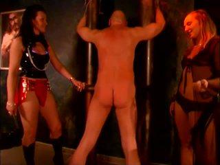جديد تعذيب hq, أفضل femdom معظم, مرح بدسم راقب