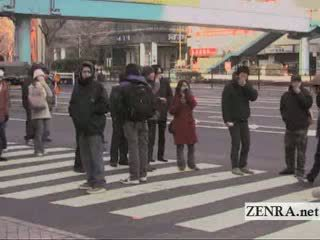 groot, japanse video-, reusachtig tube