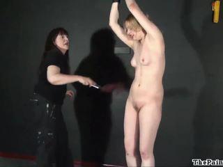 echt vreemd kanaal, kijken odd sex vid, kijken unusual sex