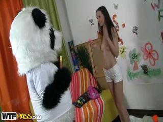 Passionate Cutie Fucks Surrounding Nice Panda