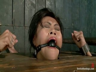 Krissie Dee First Ever Shoot Ever Has The Severe Wooden Stock Back Arch, Unforgiving Metal Hogtie And Brown Eye Hook, And A First Ever Ever Diamond Bend Only Onto DB!