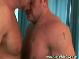 best porn check, gay hq, rated gays new