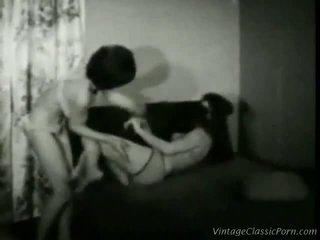 Vintage Cat Fight