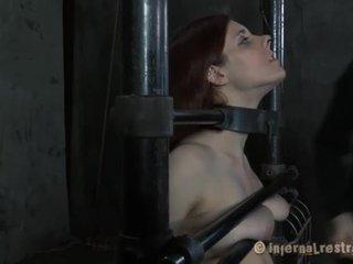 hd porn free, see bondage all, bondage sex