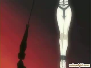 hentai, meer ezel tube, kijken hardcore thumbnail
