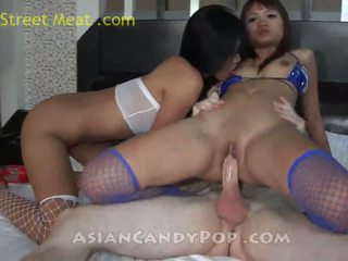 more fishnets more, watch shaved, hottest thai