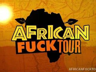 vol paardrijden scène, afrikaanse tube, alle ebbehout actie