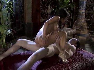 vy bruneta, nejžhavější orální sex jmenovitý, nejlepší vaginální sex