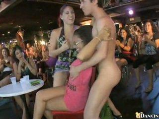 নতুন male stripper