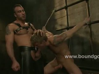 gay, quality muscle, any leather porn