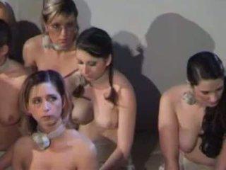 Lezdom porn