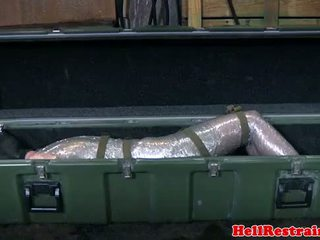 Mummified বশ্য করা learns discipline