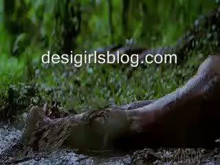 Indian actress mallika sherawath all nude scenes in HISSS