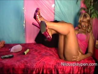 Ass Pussy & Toy Webcam Show #570