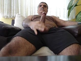 you white you, rated big dick watch, check bear check