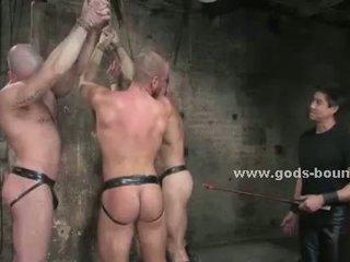 homo- video-, spier, heet homp