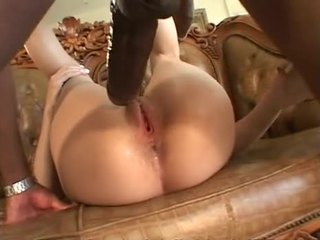 brünette, oral sex, vaginal sex