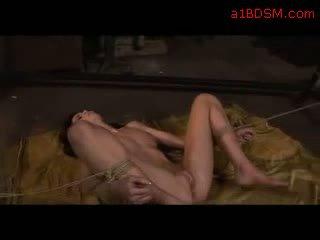 Blackhaired fata cu tied picioare și arms getting ei gură și pasarica inpulit cu dildo pe the podea de amanta în the workshop