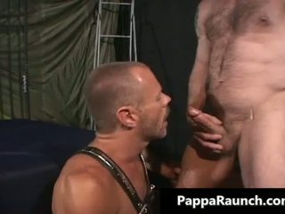 fucking, gay, muscle