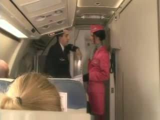 blowjobs, stewardess, tegar