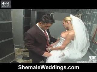 ホット ミックス の alessandra, marjorie, camile シーメール セックス ビデオ