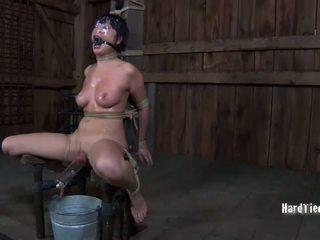 hardcore sex, seks, penghinaan
